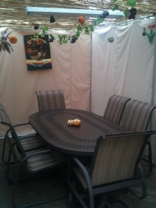 The Badzin Sukkah 2010
